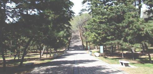 福陵 階段